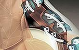 Cánh tay (Full Arm chức năng)